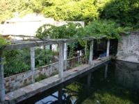 21.08.2010. Imatge de la bassa.