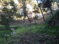 15.01.2011. Vista de l'entorn de la font.