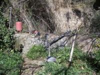 Imatge de la paret de la bassa.