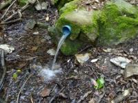 Imatge del tub abocant a la llera del torrent.
