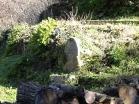 19.02.2012.- Vista de la font i de la pica.
