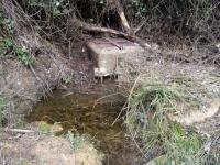 15.01.2011. Imatge on apareix l'aiguaneix.