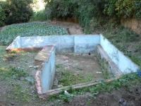 Imatge de la bassa.